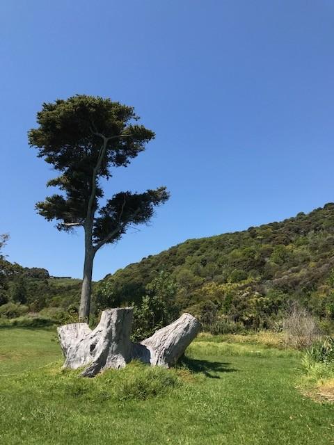 Die Vegetation ist einfach wunderschön!