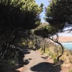 Ein kleiner Spaziergang in der Nähe mit Aussicht auf die Bucht von Oponi.