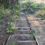 Treppen. Zahllose Stufen rauf und wieder runter. Ich hasse Treppen, ehrlich!
