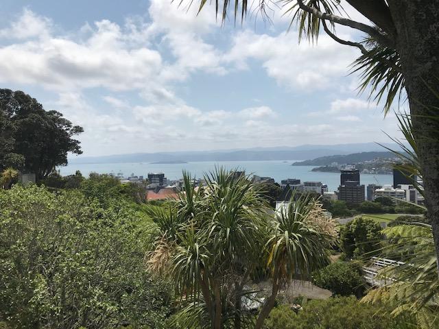 Blick auf die Harbour Bay von oben