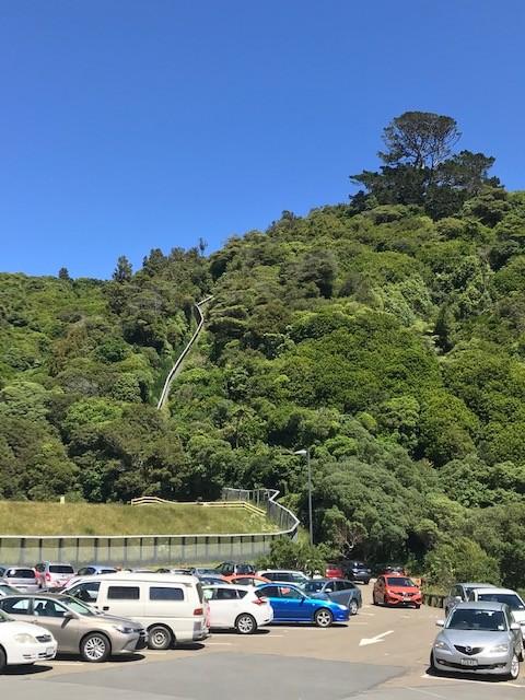 Oberhalb des Parkplatzes ist der Zaun zu sehen, der das Ecosanctuary umgibt.